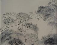 22Von der Natur Gemachtes/ Wiesenkerbel 2012